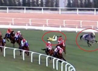 Adana'daki at yarışı kazalarıyla ilgili araştırma başlatıldı